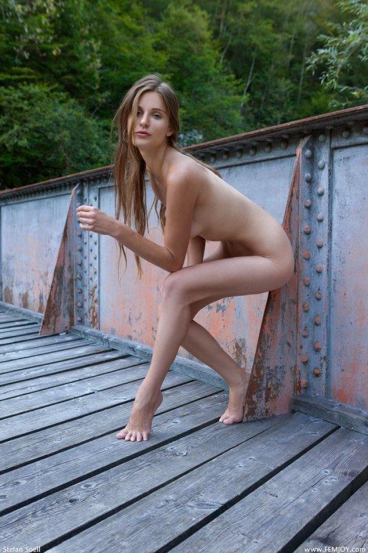 Голая модель на лесном мостике (18 фото)